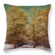 Trees In Oregon Winter Throw Pillow
