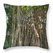 Trees With Aerial Roots At The Coba Ruins  Throw Pillow