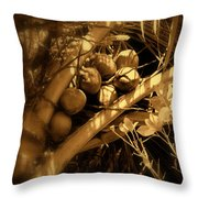 Tropical Dreams Throw Pillow