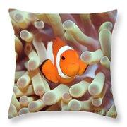 Tropical Fish Clownfish Throw Pillow by MotHaiBaPhoto Prints