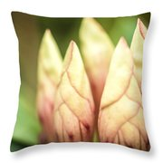 Tropical Garden 7 Throw Pillow