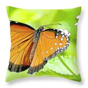 Tropical Queen Butterfly Framing Image Throw Pillow