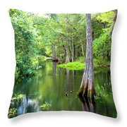 Tropical River 3 Throw Pillow
