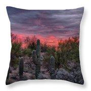 Tucson Sunset Throw Pillow