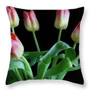 Tulip Bouquet Throw Pillow by Tracy Hall