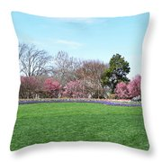 Tulips In The Park. Throw Pillow