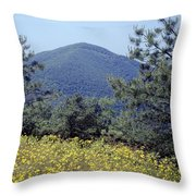 143419-turk Mountain Overlook  Throw Pillow