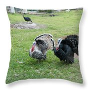 Turkeys In The Yard At Laguna Guerrero Throw Pillow