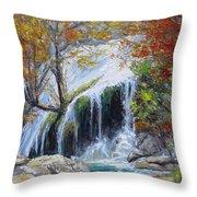Turner Falls Oklahoma Throw Pillow