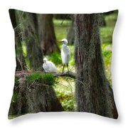 Two Baby Great Egrets And Nest Throw Pillow