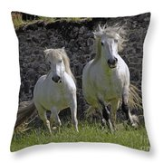 Two Highland Ponies. Throw Pillow