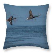 Two Mallard Ducks In Flight Throw Pillow