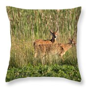 Two Of Them Throw Pillow