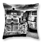 Two Old Beauties Throw Pillow