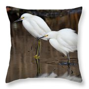 Two Snowy Egrets Throw Pillow