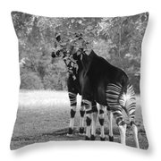 Two Stripers Throw Pillow