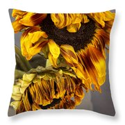 Two Sunflowers Tournesols Throw Pillow