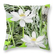 Two Water-lilies Throw Pillow