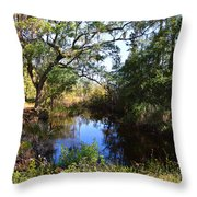 Typically Tidal Throw Pillow