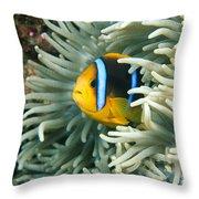 Underwater Close-up Throw Pillow