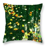 Union Of You And Your Brothers Throw Pillow