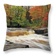 Unnamed Falls Throw Pillow