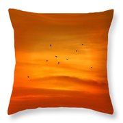 Upon A Sunset Flight Throw Pillow