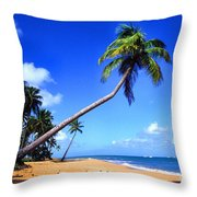 Vacia Talega Beach Throw Pillow