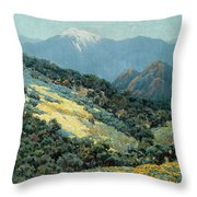 Valley Splendor Throw Pillow