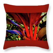 Variegated Ti Leaves Throw Pillow