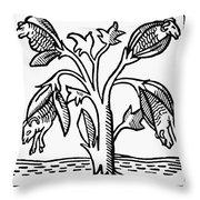 Vegetable Lamb Myth Throw Pillow