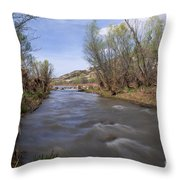 Verde River Throw Pillow