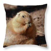 Very Large Overweight Prairie Dog Sitting In Dirt Throw Pillow