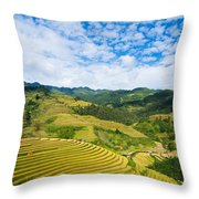 Vietnam Rice Terraces Throw Pillow