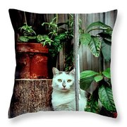 Village Cat Throw Pillow