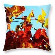 Vineyard 12 Throw Pillow
