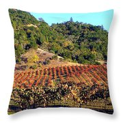 Vineyard 3 Throw Pillow