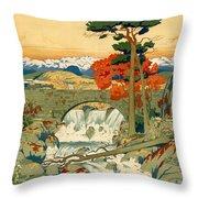 Vintage Poster - Norway Throw Pillow