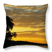 Viti Levu, Coral Coast Throw Pillow