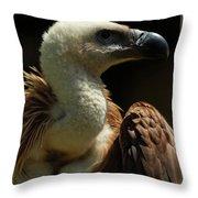 Vulture. Gyps Fulvus Throw Pillow
