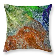 W 045 Throw Pillow