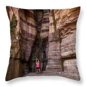 Wadi Zered, Western Jordan. Throw Pillow