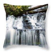 Wagner Falls Throw Pillow