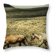 Walking The Line At Pilot Butte Throw Pillow by Lou Novick
