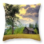 Washington Homestead Throw Pillow