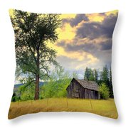 Washington Homestead Throw Pillow