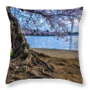 Washington Monument Cherry Blossoms Throw Pillow