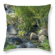 Water And Wildflowers Throw Pillow