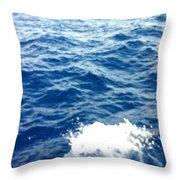 Water Crash  Throw Pillow