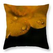 Water Diamonds  9 Throw Pillow